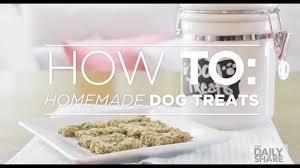 easy diy dog treats that will give your