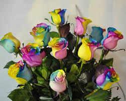 polites florist upper darby pa