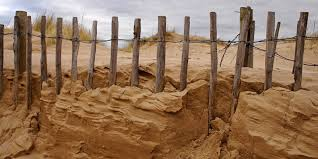 How Can You Help Prevent And Control Soil Erosion Greentumble