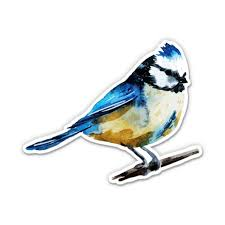Blue Tit Chickadee Beautiful Bird Painted 8 Vinyl Sticker For Car Laptop I Pad Waterproof Decal Walmart Com Walmart Com