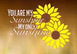 You Are My Sunshine Vinyl Decal Car Decal Truck Decal Yeti Decal Laptop Decal Sunflower Decal Lyric Decal Oraca Car Decals Vinyl Vinyl Decals My Sunshine