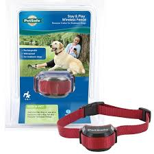 Petsafe Stubborn Dog Stay Play Wireless Fence Receiver Collar Chewy Com