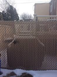 Need Help In Covering An Ugly Chain Linked Fence Of My Neighbors