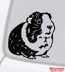 Guinea Pig Vinyl Decal Sticker Car Window Funny Pet Love Animal Cute Cavy Rodent Ebay