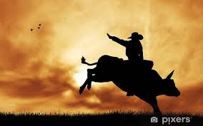 Bull Rider At Sunset Wall Mural Pixers We Live To Change