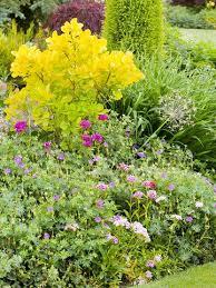 cottage style landscape design flower