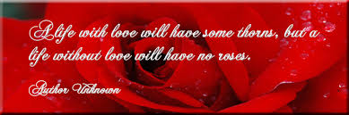 photo of red rose quote life love thorns from