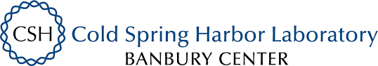 Humans of Banbury: Interview with Adnaan Wasey - Cold Spring Harbor  Laboratory