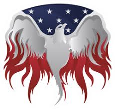 Silver American Eagle Usa Flag And Flames Sticker