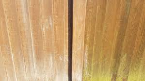Garden Fence Cleaners Why Clean Wooden Fence Panels Home Gardener