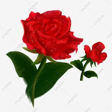 مرسومة باليد ناقلات وردة حمراء ناقلات رسمت باليد الزهور Png