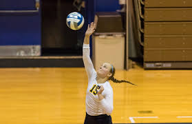Abby Sanders - 2016 - Women's Volleyball - Wilkes University Athletics