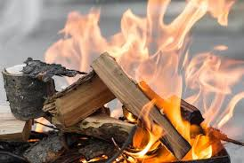 Curious Kids Why Does Wood Crackle In A Fire