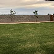 Amazon Com Solar Fence Post Lights Othway Outdoor Waterproof Colorful Decorative Wall Lights Easy Installation Dark Sensing Home Improvement