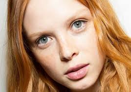 this is the best makeup for red hair