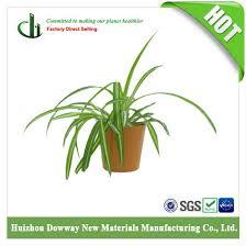 china eco friendly indoor plant fiber