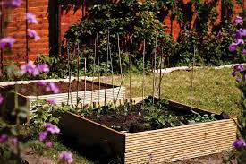 small scale crop rotation inspired