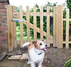 Dog Fencing Jacksons Fencing