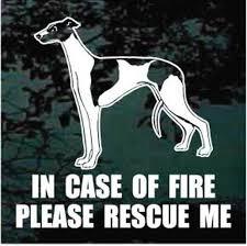 Greyhound Car Decals Stickers Decal Junky