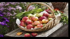 Открытка 19 августа яблочный спас - лучшие поздравления в ...