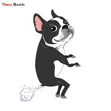 Three Ratels Trl041 12x16 2cm Car Animal Funny Car Stickers Boston Dog Terrier Farts Car Stickers And Decals Car Stickers Aliexpress