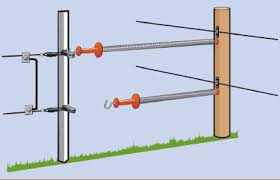 Gates And Pathways In Electric Fences Rappa Fencing