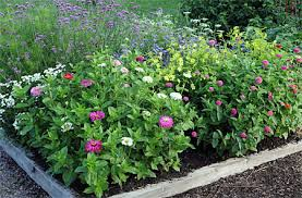 plans for cutting gardens with planting