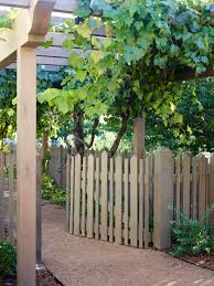 Grapevine Fence Houzz