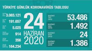 Türkiye'nin günlük corona virüs tablosu (24 Haziran 2020 ...