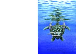 Https Www Rac Spa Org Sites Default Files Doc Turtles Manuel Formateurs Pdf