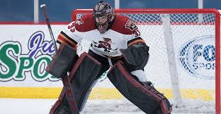 Arizona Coyotes sign Adin Hill to... - Tucson Roadrunners | Facebook