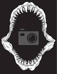 Shark Jaw Isolated Vector Illustration Wall Mural Wallpaper Murals Tairygreene