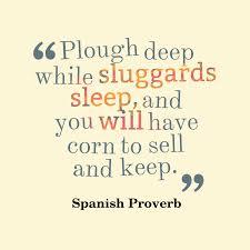 Spanish wisdom about effort.