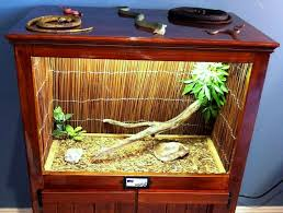 diy reed mat reptile decor reptile