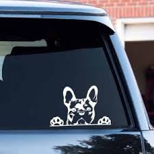 Big Offer 3957 Three Ratels Fc57 3d Dog Sticker Black White Frenchie French Bulldog Decal Bumper Sticker For Window Car Truck Laptop Toilet Cicig Co