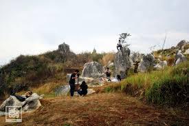 stone garden haran batu artistic di