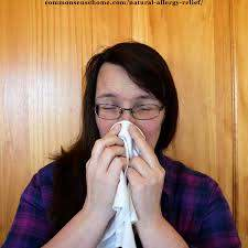 natural allergy relief 15 home