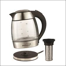 small electric tea kettle with infuser