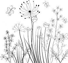 wild flowers field background black