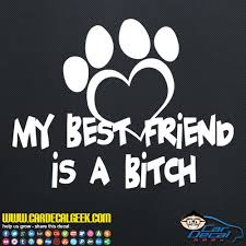 My Best Firend Is A Bitch Dog Car Window Laptop Wall Decal Sticker