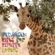 giraffe gifts for giraffe