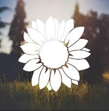 Flower Decal Sunflower Decal Daisy Decal Car Decal Window Etsy Car Decals Cute Car Decals Car Decals Vinyl