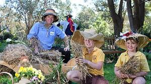 Environmental festival crows into spring - ABC Illawarra NSW - Australian  Broadcasting Corporation