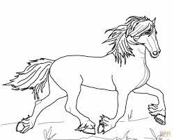 Kleurplaten Kleurplaat Van Een Paard