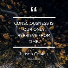 consciousness is our only reprieve fro mason cooley about time