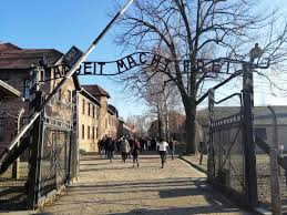 from warsaw auschwitz birkenau and
