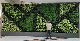 the vertical garden professionals at
