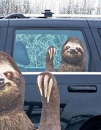 Thumbs Up Ride With Sloth Car Decal Multi Rw Slthlhd Tillys