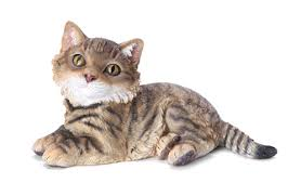 tabby cat garden ornament