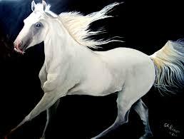 صور خيل صور جميلة للحصان رمزيات